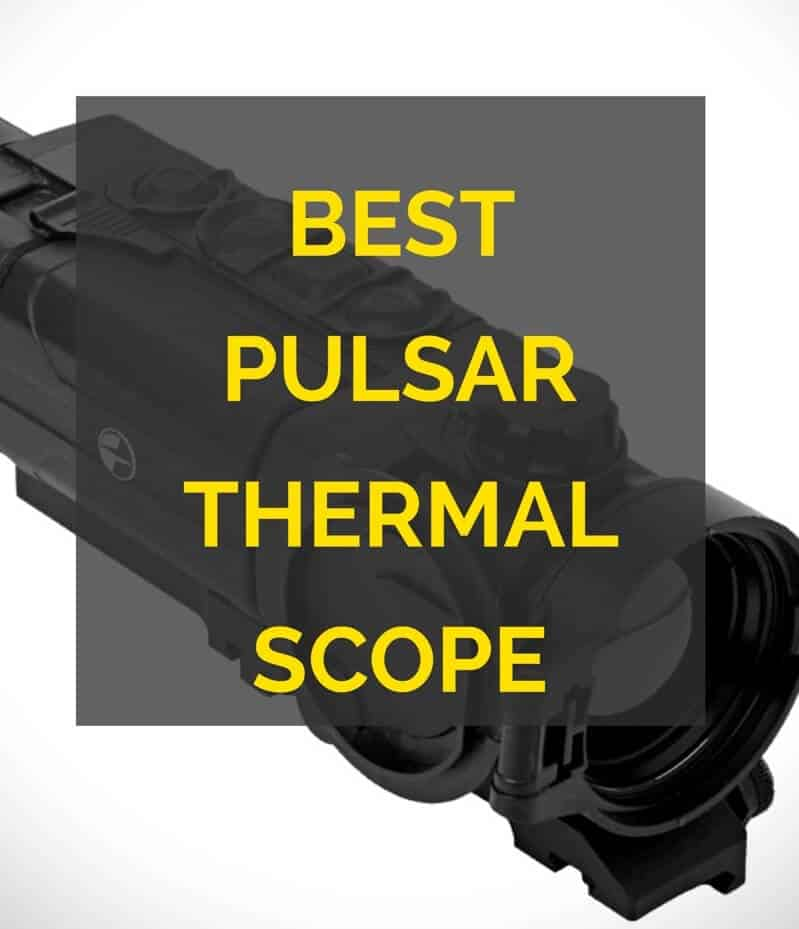 Best Pulsar thermal scope
